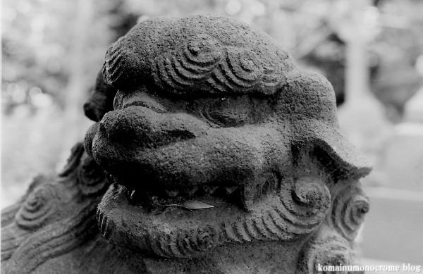 糟嶺神社(調布市入間町)4
