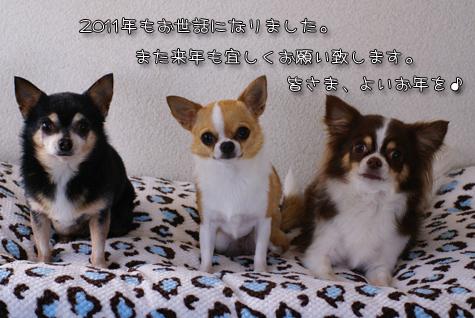 DSC0105912301.jpg