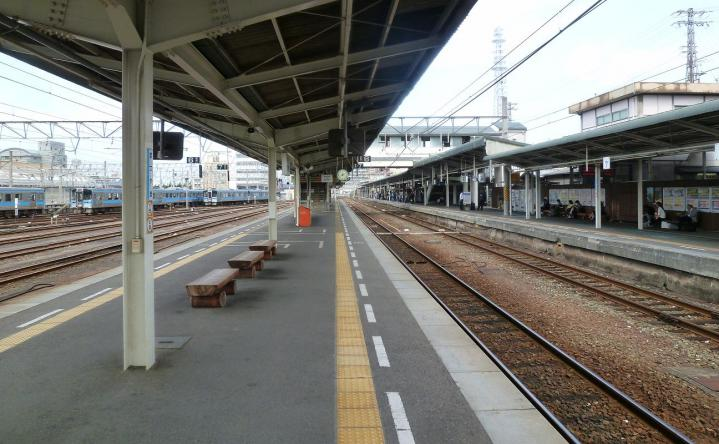 P1170486_.jpg