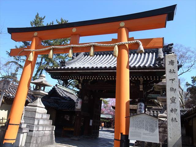 教えたくない・・・梅の隠れた見どころかも!? 下御霊神社さん 京都季節散歩