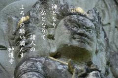 21_03.jpg