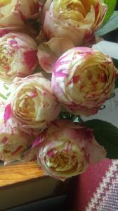 パティラナンキュラスの薔薇