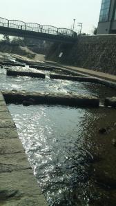 六甲道からの川添い