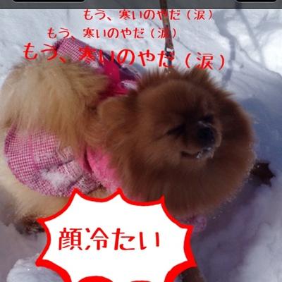 fc2blog_2013032317020072d.jpg