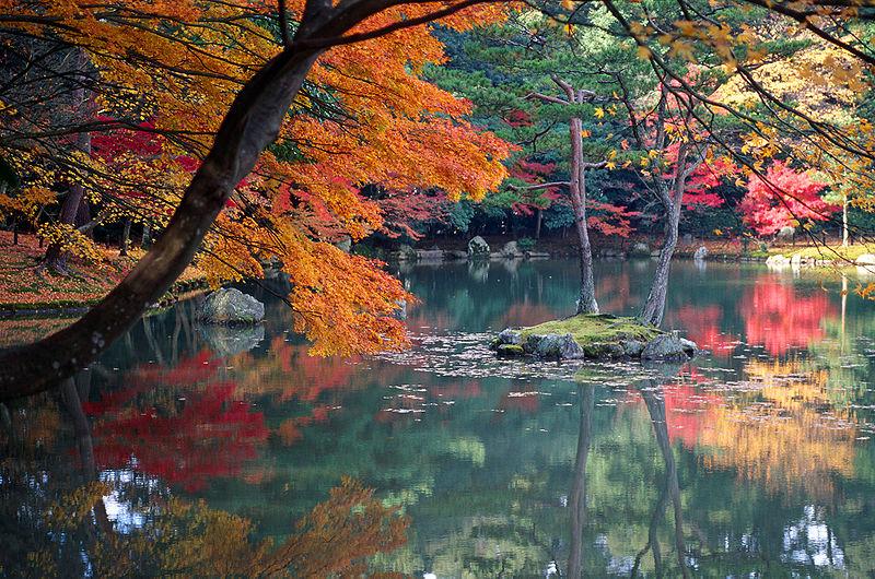 800px-KyotoAutumn.jpg