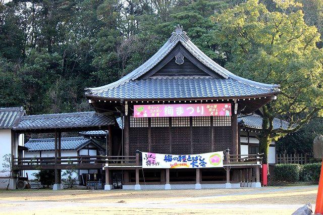 護国神社梅祭り