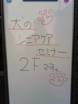 シニアドッグケアセミナーと犬猫の体の仕組みセミナーに行ってきた☆