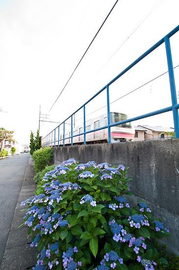 超広角風景-10