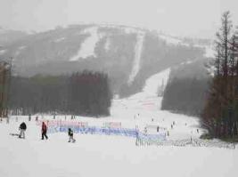 スキー030 s