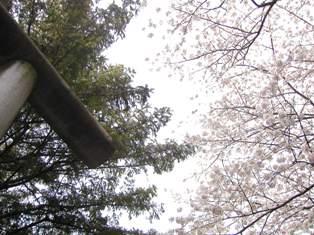 熊野神社(1)