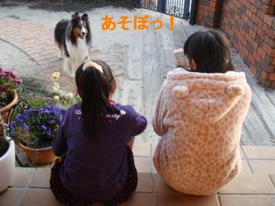DSC05031_convert_20130315180558.jpg