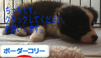 blog_import_51125b2d2ee23.png