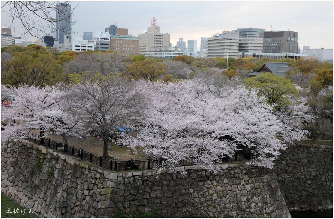 大阪城公園2
