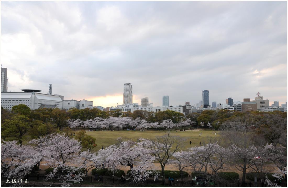 大阪城公園5