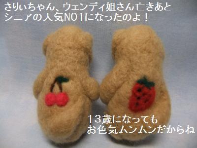 さりぃちゃん 4