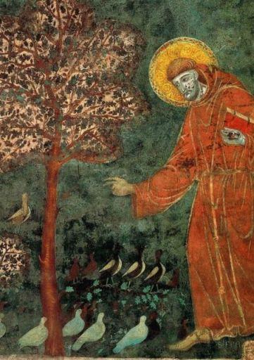 鳥と聖フランチェスコ