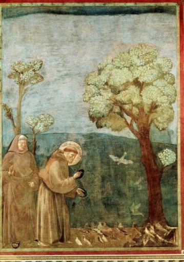 鳥と聖フランチェスコ2