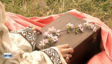 13サダハムの梅花