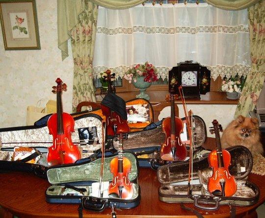 美雨の使ったヴァイオリンたち