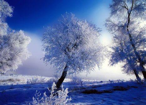 ロシアの雪の風景