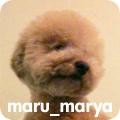 マルマーヤ