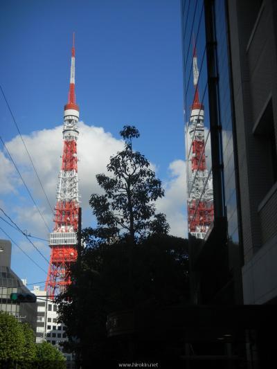 東京タワーが2本!?