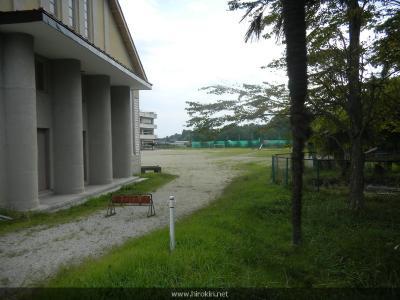 草の生えた校庭